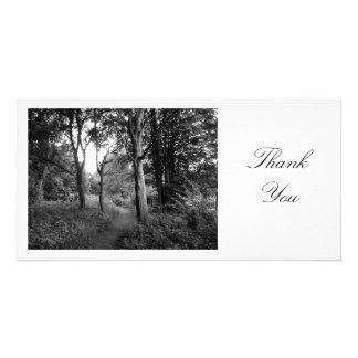 Path in the Woods - Thank You Photo Greeting Card