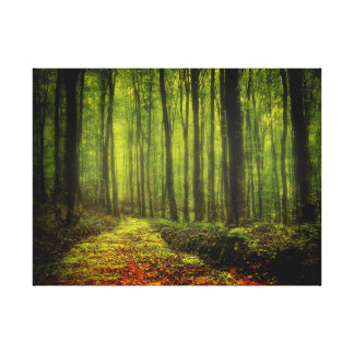 Path In Woods Canvas Print