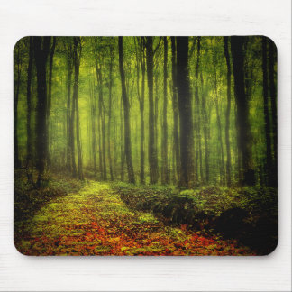 Path In Woods Mouse Pad
