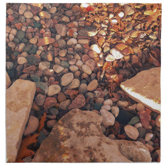 Path Of Pebbles Napkin