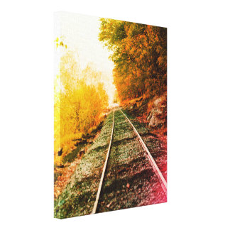 Path of Solitude Canvas Print