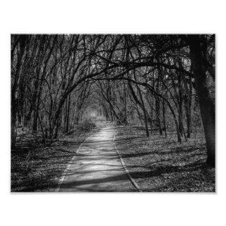 Path Photo Print