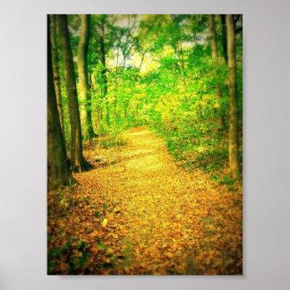 Path Poster