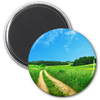 Path Themed, Tire Tracks Create A Path Through Gre Magnet
