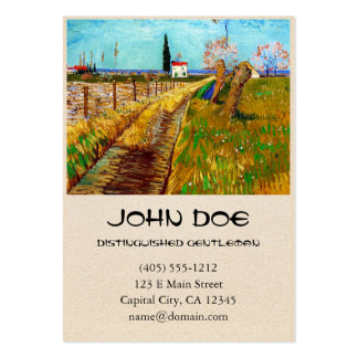 Path through a Field with Willows Van Gogh Pack Of Chubby Business Cards