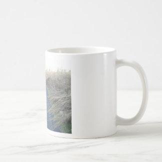 Path Through Fall Meadow Grass Coffee Mug