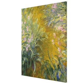 Path through the Irises Canvas Print