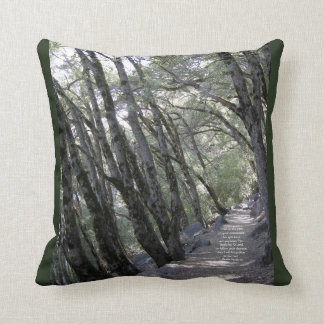 Path Throw Pillow Psalm 119:32-33