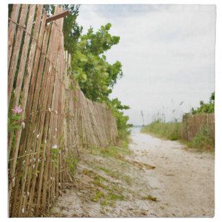 Path to Bliss on Florida Beach Napkin