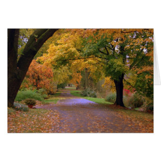 Path to Fall Card