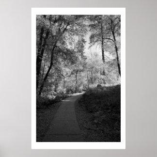Path to Oak Creek Poster