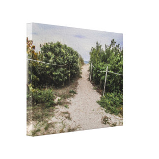 Path to the Beach Canvas Print