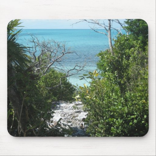 Path to the beach mouse pad
