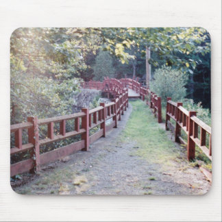 Path Unknown Mouse Pad