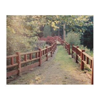 Path Unknown Wood Print