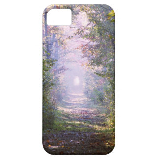Pathway Barely There iPhone 5 Case