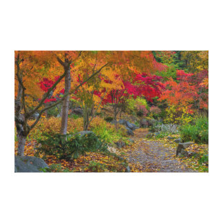 Pathway leads to park bench stretched canvas print