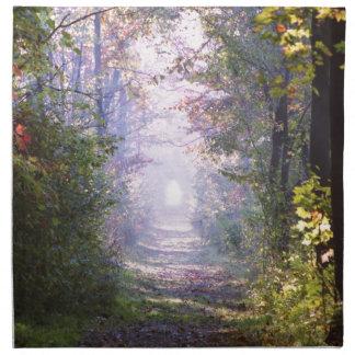 Pathway Napkin