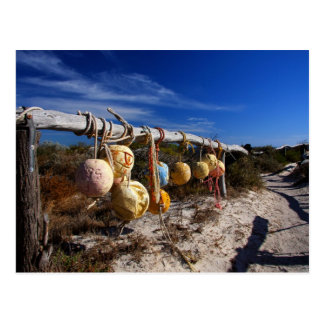 Pathway to the Beach - Dongara - Western Australia Postcard