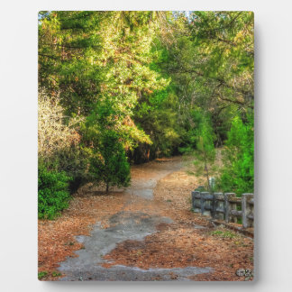 Pathway winds through fall foliage plaque