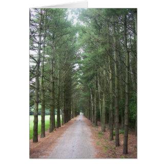 Pathways Card