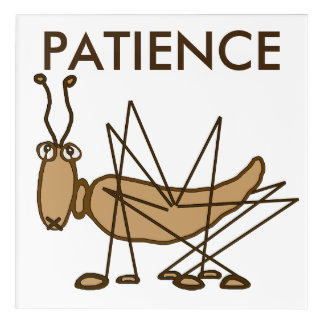 Patience grasshopper acrylic print