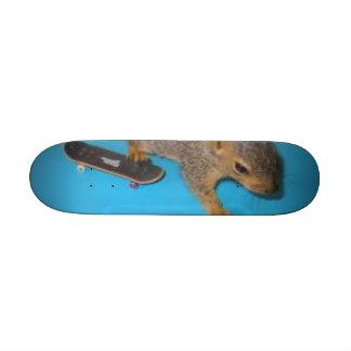 patience, skating squirel skateboard deck