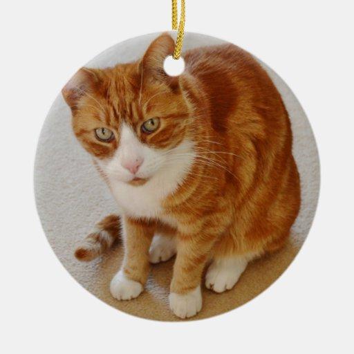 Patient Pumpkin. Ornament