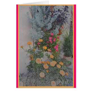 Patio flowers in Bovec, Slovenia Card