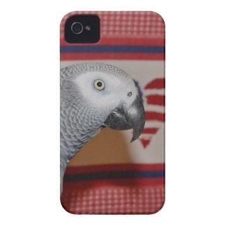 Patriotic African Grey Parrot iPhone 4 Cases