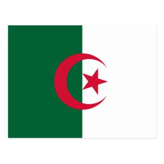 Patriotic Algerian Flag Postcard