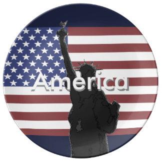 Patriotic American Flag Collectors Plate USA Porcelain Plates