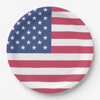 Patriotic American Flag USA Themed Party 9 Inch Paper Plate