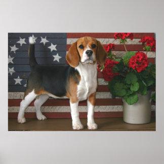 Patriotic Beagle Poster
