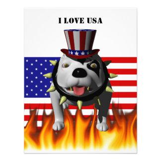 Patriotic BoBo 3 Personalized Announcement
