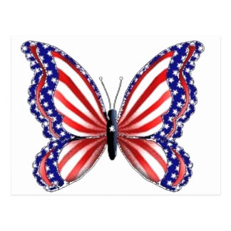Patriotic Butterfly Postcard