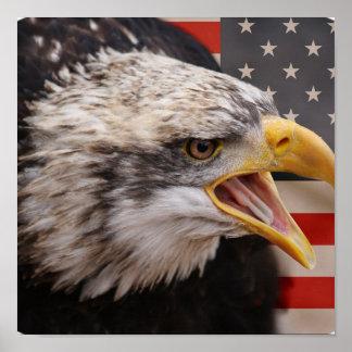 Patriotic Eagle Image Poster Print