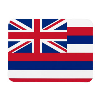 Patriotic flexible magnet with Hawaii flag
