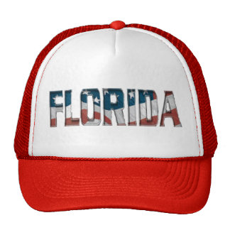 Patriotic Florida on American flag - Hat