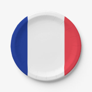 Patriotic French Flag Paper Plate