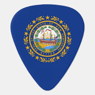 Patriotic guitar pick with Flag of New Hampshire