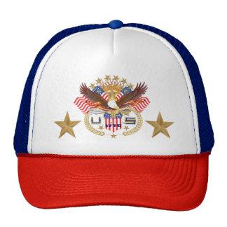 Patriotic Name tag says Veteran. Cap