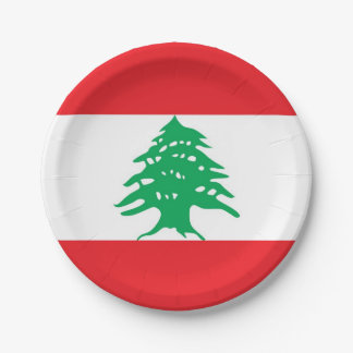 Patriotic paper plate with flag of Lebanon