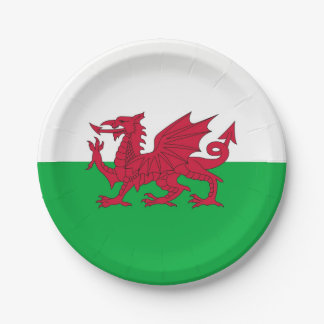 Patriotic paper plate with flag of Wales