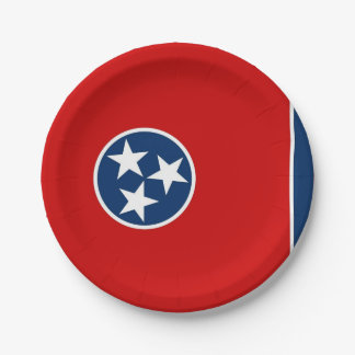 Patriotic paper plate with Tennessee flag