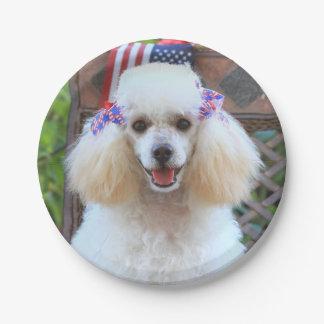 Patriotic poodle dog paper plates
