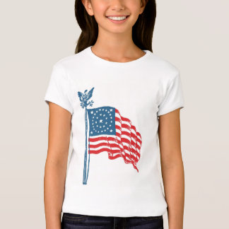 Patriotic Vintage Historic American Flag T-shirts