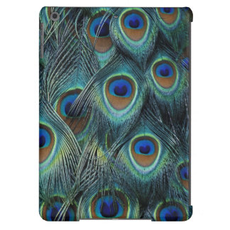 Pattern in male peacock feathers iPad air cases