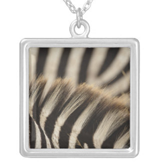 Pattern of Burchell's Zebra stripes, Equus Necklace