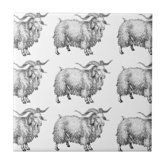 pattern of the old ram tile